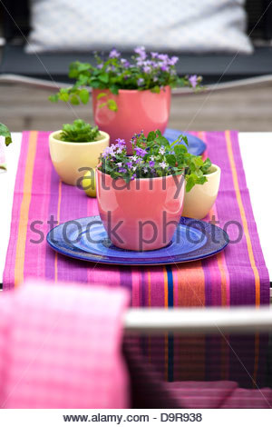 flower vases on the table in the terrace - Stock Photo