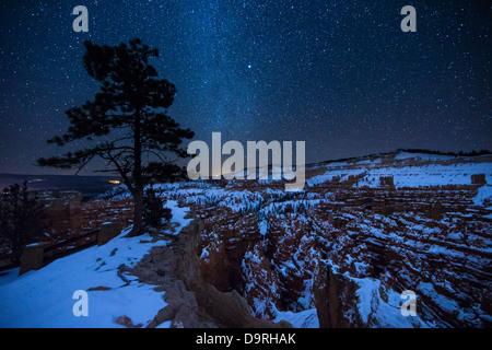 Amphitheatre, Bryce Canyon, Utah, USA - Stock Photo