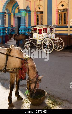 a horse and carriage, Pyin Oo Lwin, Myanmar (Burma) - Stock Photo