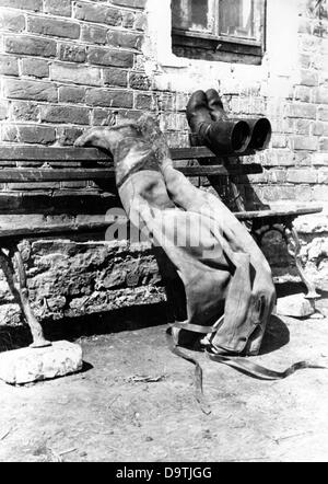 The Nazi Propaganda! on the back of the image reads: 'Still life in front of the shelter. Pants and boots wear put - Stock Photo