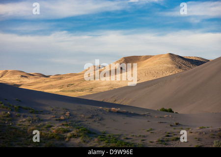 Mix of shade and light on dunes.