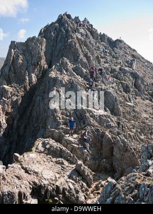 Scramblers descend the pinnacles on Crib Goch, a famous knife-edge arete on the flanks of Snowdon - Stock Photo