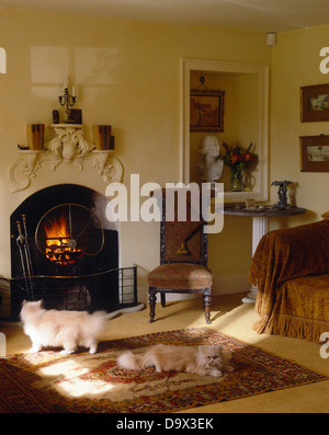 Cat on rug in front of fireplace with lit fire and unusual mantel ...