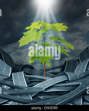 Growth achievement as a tree sapling emerging and breaking free from a group of tangled urban roads and highways - Stock Photo