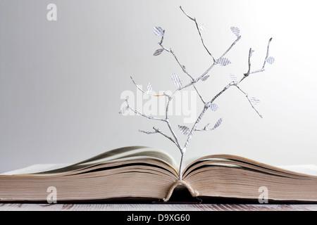 books on wisdom and knowledge pdf