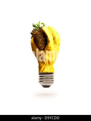 Gloved Hand Light Bulb Holding DIrt - Stock Photo