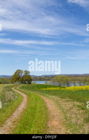 Dirt road through a meadow, leading to the Hiwassee River under a blue sky with cirrus clouds. - Stock Photo