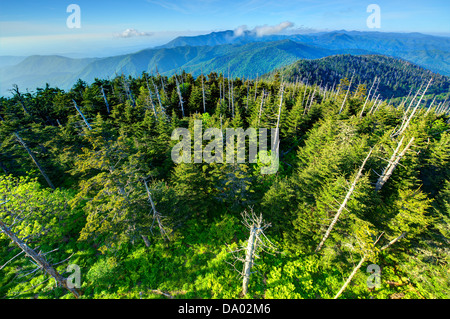 View from the observation deck of Clingman's Dome in the Great Smoky Mountains. - Stock Photo