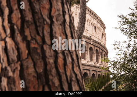 A section of the Colosseum seen from the parco del colle oppio in Rome, Italy. - Stock Photo