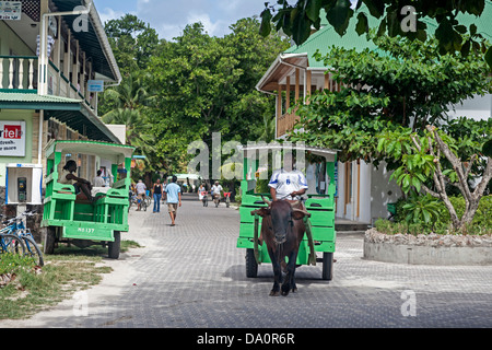 Oxcart taxi on the main street of La Passe ,La Digue, Seychelles, Indian Ocean, Africa - Stock Photo