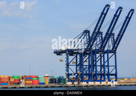 Gantry cranes for lifting containers on dockside terminal quay of largest container port in UK. Felixstowe Port - Stock Photo