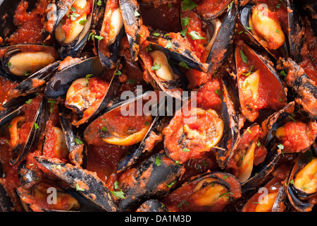 Mussels on stirfried tomato sauce close-up - Stock Photo