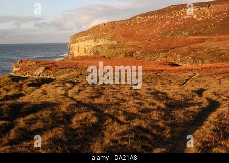 Dunnet head coastal walk - peninsula in Caithness - most northerly point of the mainland of Great Britain - Caithness - Stock Photo
