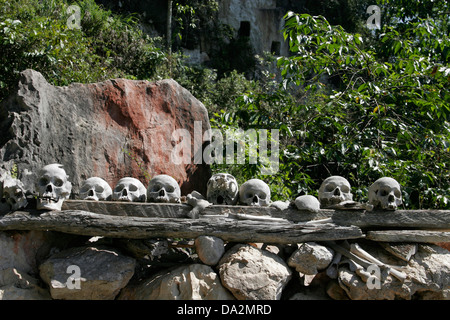 Skulls of dead ancestors, Tana Toraja, Sulawesi, Indonesia - Stock Photo