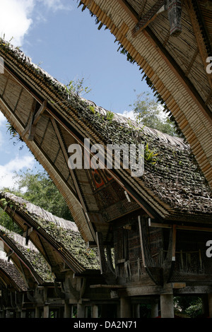 Traditional Torajan houses (tongkonan) in Kete Kesu vilage, Tona Toraja, Sulawesi, Indonesia - Stock Photo