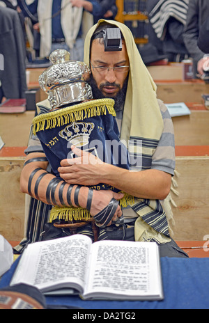 A man wearing a prayer shawl & phylacteries holding a Torah during weekday morning services at Lubavitch  headquarters - Stock Photo
