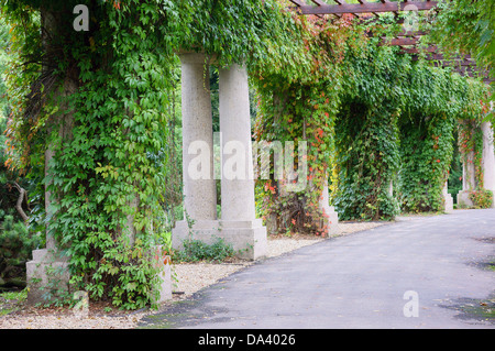 Wroclaw Pergola near Centennial Hall - Stock Photo