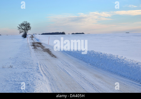 Road at field in winter - Stock Photo