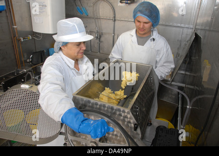 Workers using churn making organically made butter from unpasteurized milk on organic dairy farm Hook and Son Longleys - Stock Photo