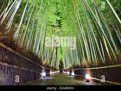 The bamboo forest of Kyoto, Japan. - Stock Photo
