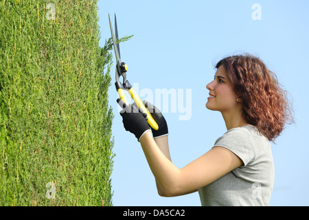 Gardener woman pruning a cypress with pruning shears with the sky in the background - Stock Photo