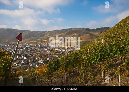 wine village, Dernau, Ahr, vineyards, Ahrtal, cultivating, red wine, grape, red wine cultivation area, Eifel, Rhineland - Stock Photo
