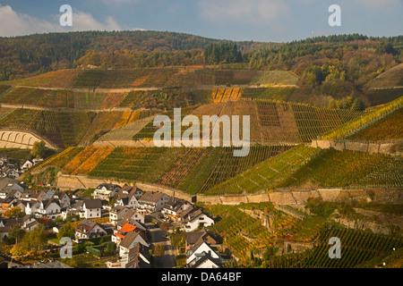 Wine village, Dernau, Ahr, vineyards, Ahrtal, red wine, late Burgundian, Portugieser, wine, wine-growing, Eifel, - Stock Photo