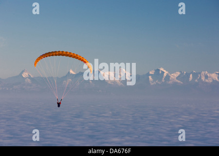 Paraglider, paragliding, sea of fog, fog, Bernese, Alps, autumn, canton, Bern, mountain, mountains, Bernese, Alps, - Stock Photo