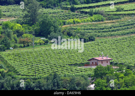 large farm with the screw for the production of grapes and wine in the Hill - Stock Photo