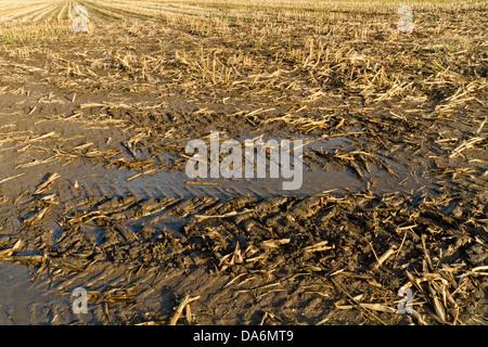 Tyre tracks on a muddy field, England, UK - Stock Photo
