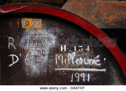 Calvados winery,chateau du breuil,breuil-en-le-vogue france - Stock Photo
