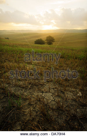 asciano,tuscany,italy - Stock Photo