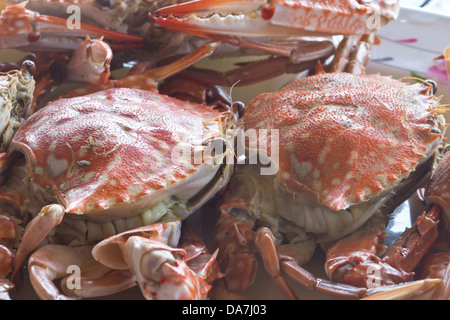 Big red fresh steamed crabs to eat - Stock Photo