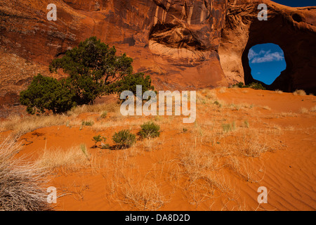 Rock formation with hole with tree in foreground at Monument Valley, UT - Stock Photo