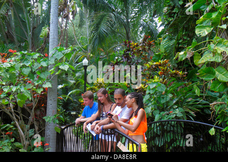 St. Saint Petersburg Florida Sunken Gardens botanical plants palm trees teen boy girl Black - Stock Photo