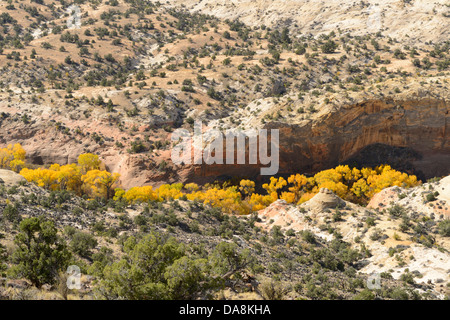 USA, United States, America, Utah, Boulder, North America, Garfield County, Colorado Plateau, Calf Creek, National - Stock Photo