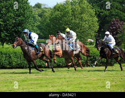 Germany, Europe, Krefeld, Rhine, Lower Rhine, Rhineland, North Rhine-Westphalia, NRW, gallop, racetrack, horse running, - Stock Photo