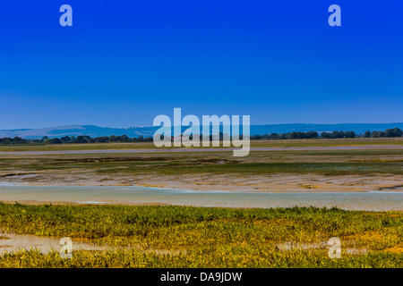 Pagham Harbour Nature Reserve West Sussex England - Stock Photo