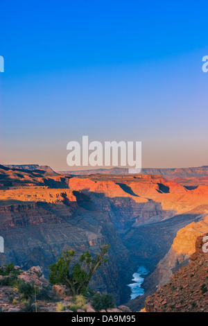 Sunrise at Grand Canyon N.P North Rim with the view from Toroweap, Arizona, USA - Stock Photo