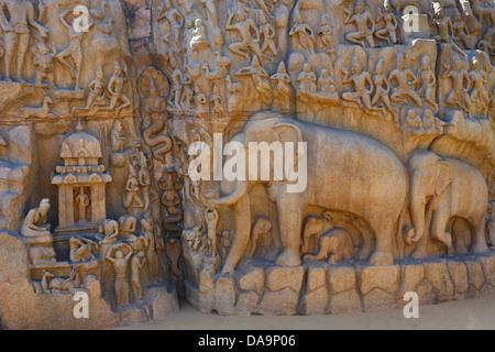 India, South India, Asia, Tamil Nadu, Mamallapuram, Mahabalipuram, Rock-cut architecture, Ajuna's Penance, world - Stock Photo