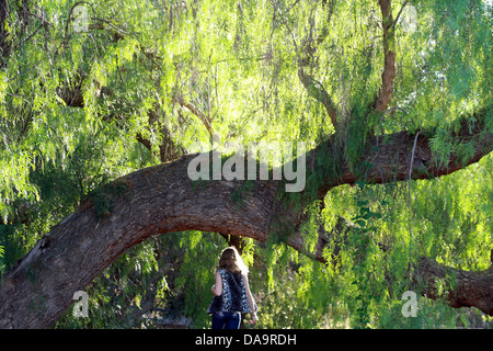 Girl and Willow Tree - Stock Photo