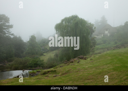 Hawklee Country House on banks Lion's River in KwaZulu-Natal Midlands South Africa is shrouded in mist area is famous - Stock Photo
