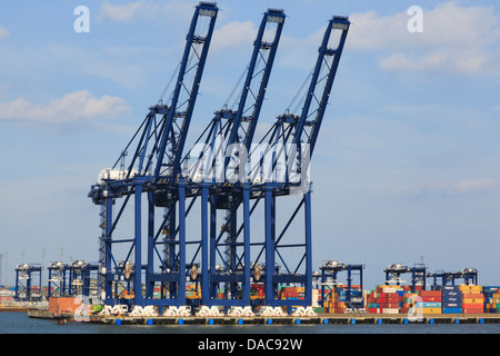 Gantry cranes for lifting containers on dockside terminal quay of largest British container port in UK. Felixstowe - Stock Photo