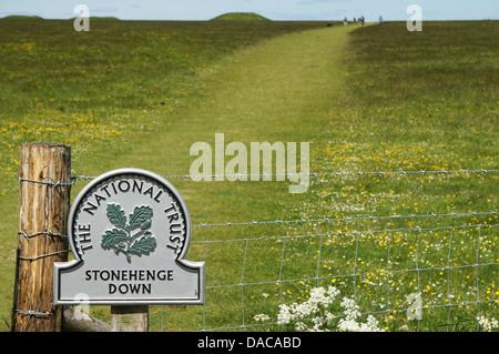 Stonehenge Wiltshire England GB UK 2013 - Stock Photo