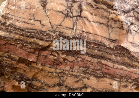 Kona Dolomite, (CaMg(CO3)2), Marquette County, Michigan. Kona Dolomite is an ancient rock formation of fossil stromatolites - Stock Photo