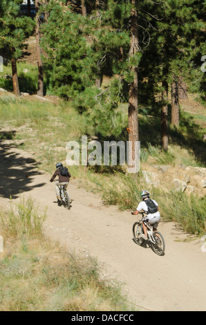 Mountain bikers on trail in Big Bear Lake, California. - Stock Photo