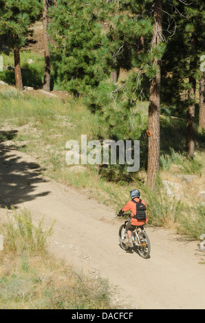 Mountain biker on trail in Big Bear Lake, California. - Stock Photo