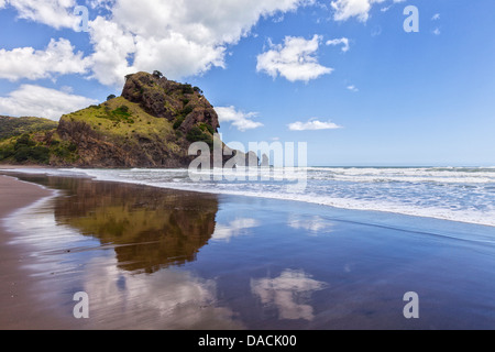 Piha Beach and Lion Rock, Auckland Region, New Zealand. - Stock Photo