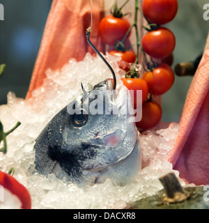 bream fish caught with hook in restaurant - Stock Photo