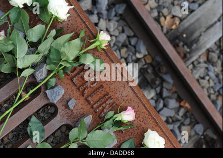 A white rose lies on platform 17 in Grunewald Station during the commemoration of the 70th anniversary of the first - Stock Photo